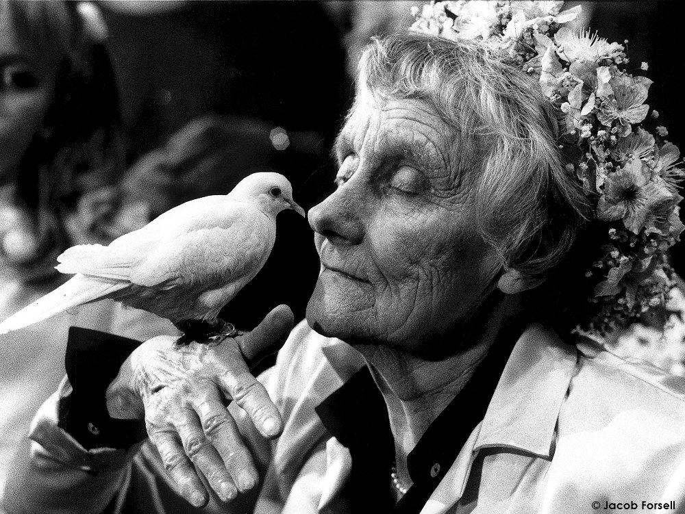 A Literary Look at Astrid Lindgren